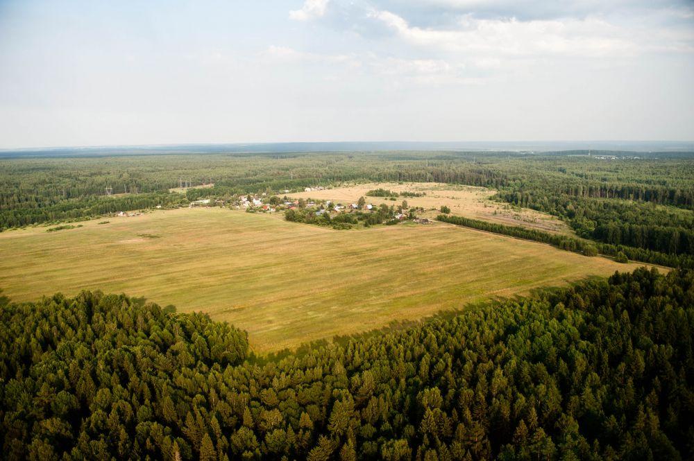земельный участок из земель сельскохозяйственного назначения